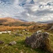 Black Valley - Kerry