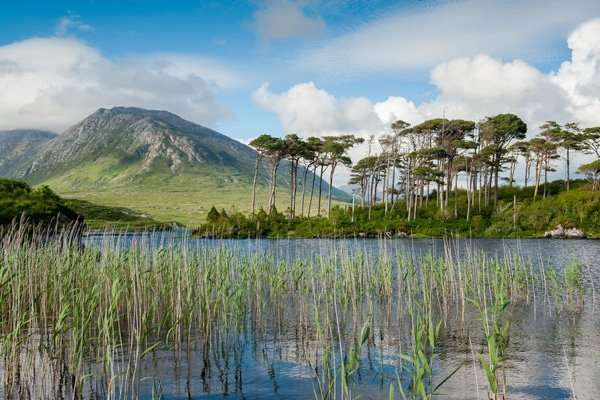 Derryclare Lough, Galway