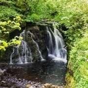 Glenariff Forest Park, Antrim
