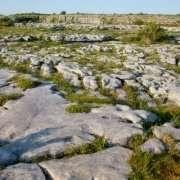 The Burren, Clare