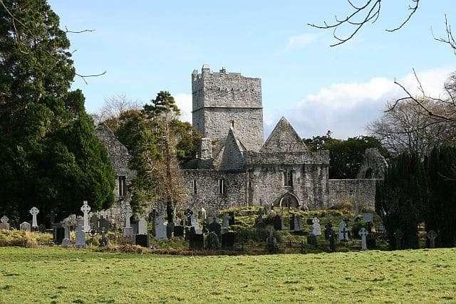 Muckross Abbey - Irland