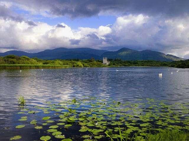 Ross Island - Irland