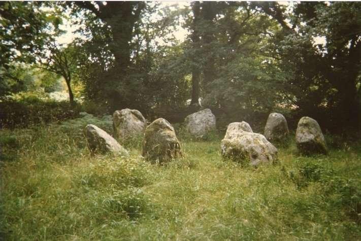 Steinkreis Lissivigeen - Irland