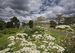 Botanischer Garten Dublin - Irland