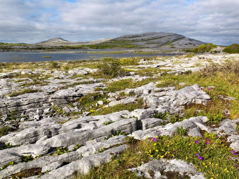Burren - Irland