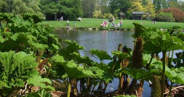 John-F.-Kennedy-Arboretum - Irland