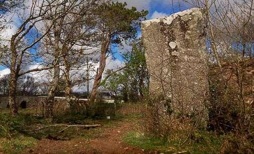 Menhir von Owenea - Irland