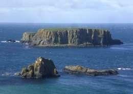 Sheep Island - Irland