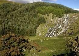 Wicklow Mountains Nationalpark - Irland