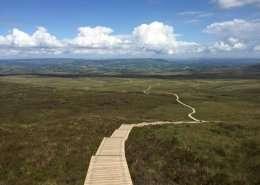 The Stairway to Heaven Weg - Irland