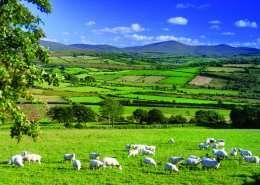 Sperrin Mountains - Irland - Nordirland